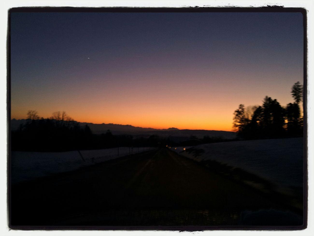 Sunset Pfäffikon Nature