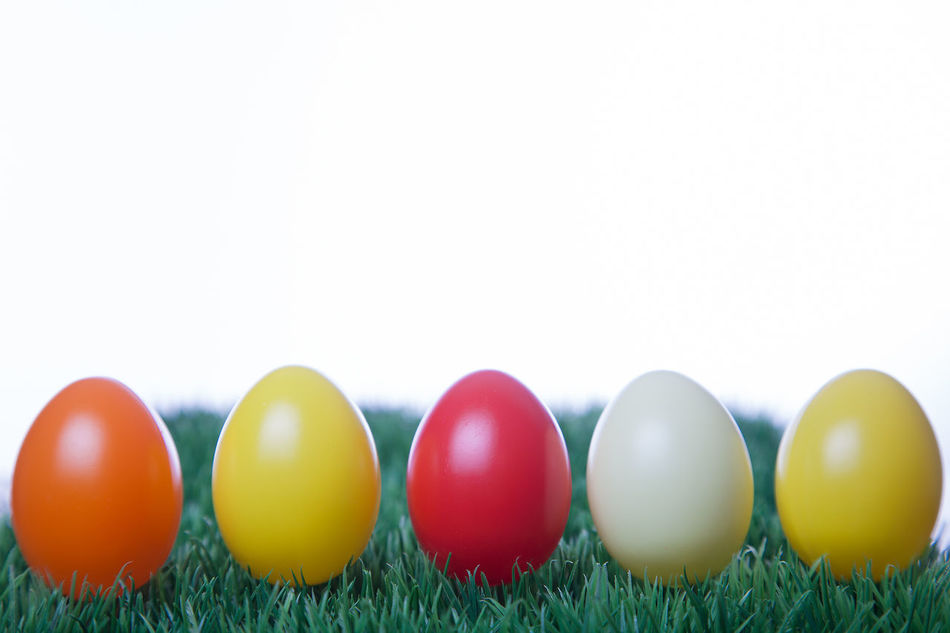Row of Easter eggs in the grass with white background Blue Celebration Celebration Event Copy Space Day Easter Easter Egg Grass Green Color Holiday - Event Many Multi Colored No People Outdoors Row Springtime White Background