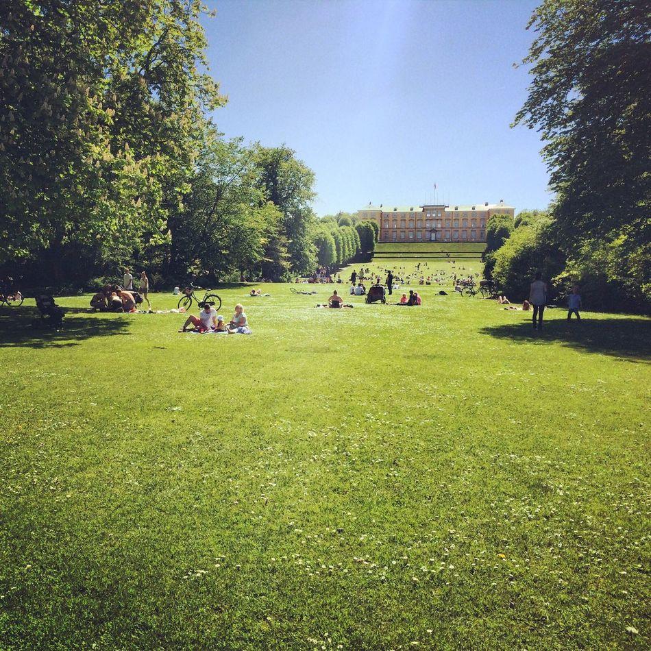 Beautiful stock photos of park, Building Exterior, Clear Sky, Copenhagen, Day