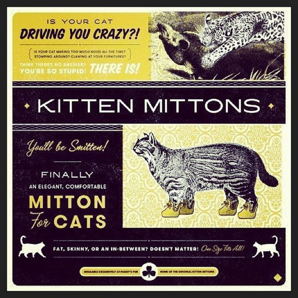 Your Cat making too much noise? Iasip Cats Kittenmittons