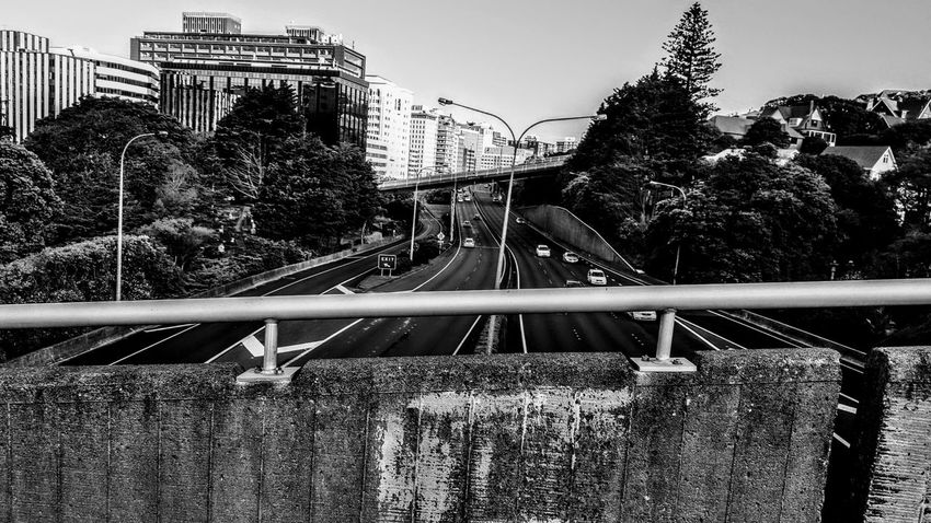 Black & White Bridge Day Highway No People Outdoors Railroad Track Road Rollercoaster Sky Tree EyeEmNewHere Adapted To The City New Zealand Architecture New Zealand Architecture City Black And White Building Exterior Built Structure Cars Highways&Freeways