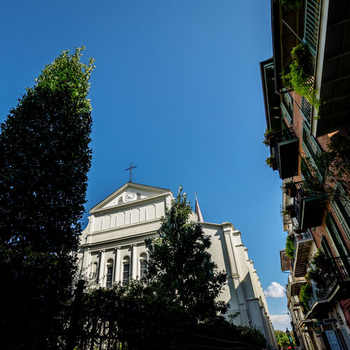 Backside of St. Louis Cathedral in the French Quarter New Orleans Architecture Balcony Blue Building Exterior Built Structure Church City Clear Sky Day French Quarter Government Low Angle View New Orleans, LA No People Outdoors Sky St. Louis Cathedral Travel Destinations Tree Urban