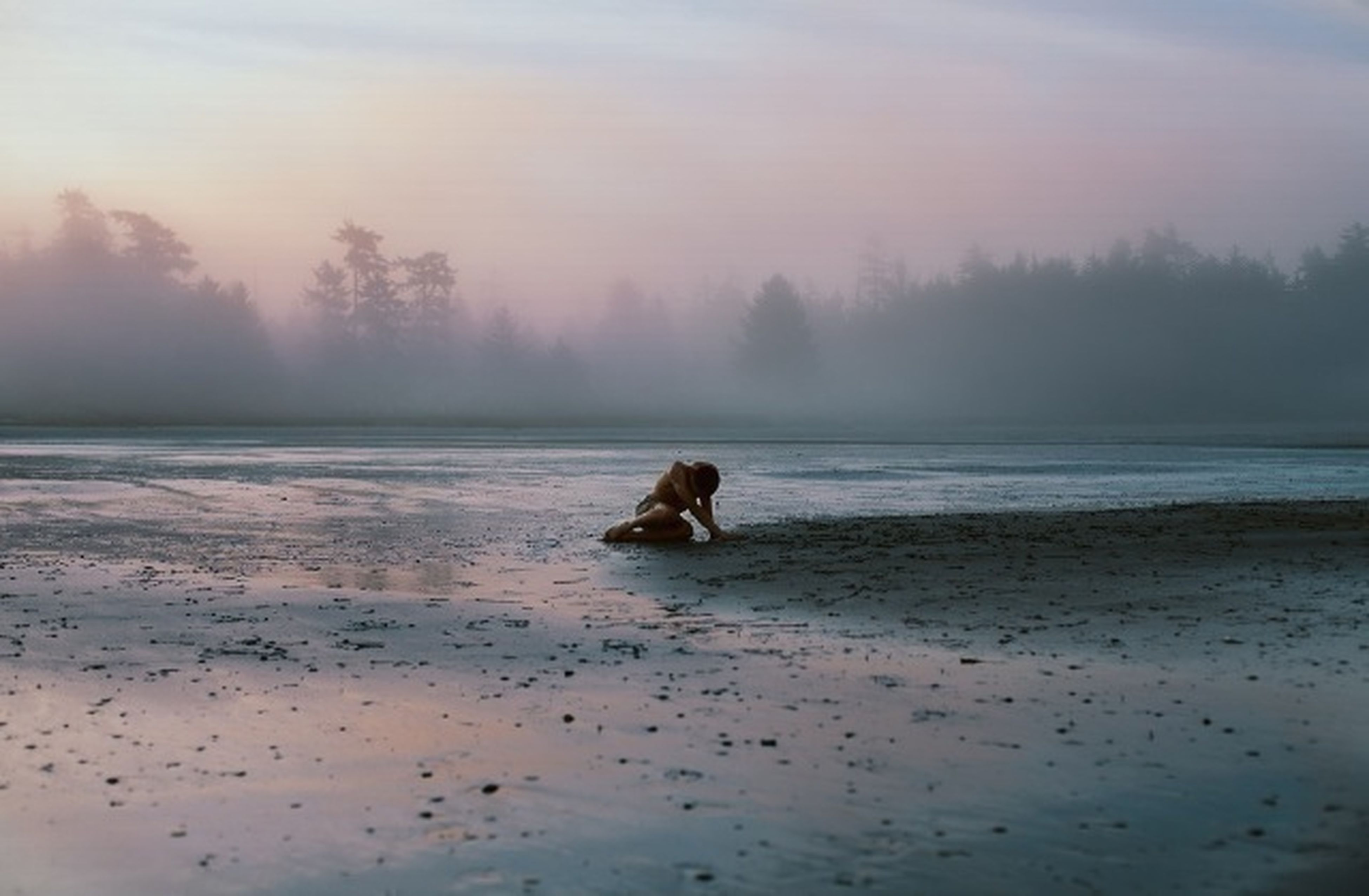 animal themes, one animal, water, dog, mammal, sea, beach, pets, sky, domestic animals, horizon over water, nature, shore, tranquil scene, tranquility, beauty in nature, scenics, animals in the wild, wildlife, sunset