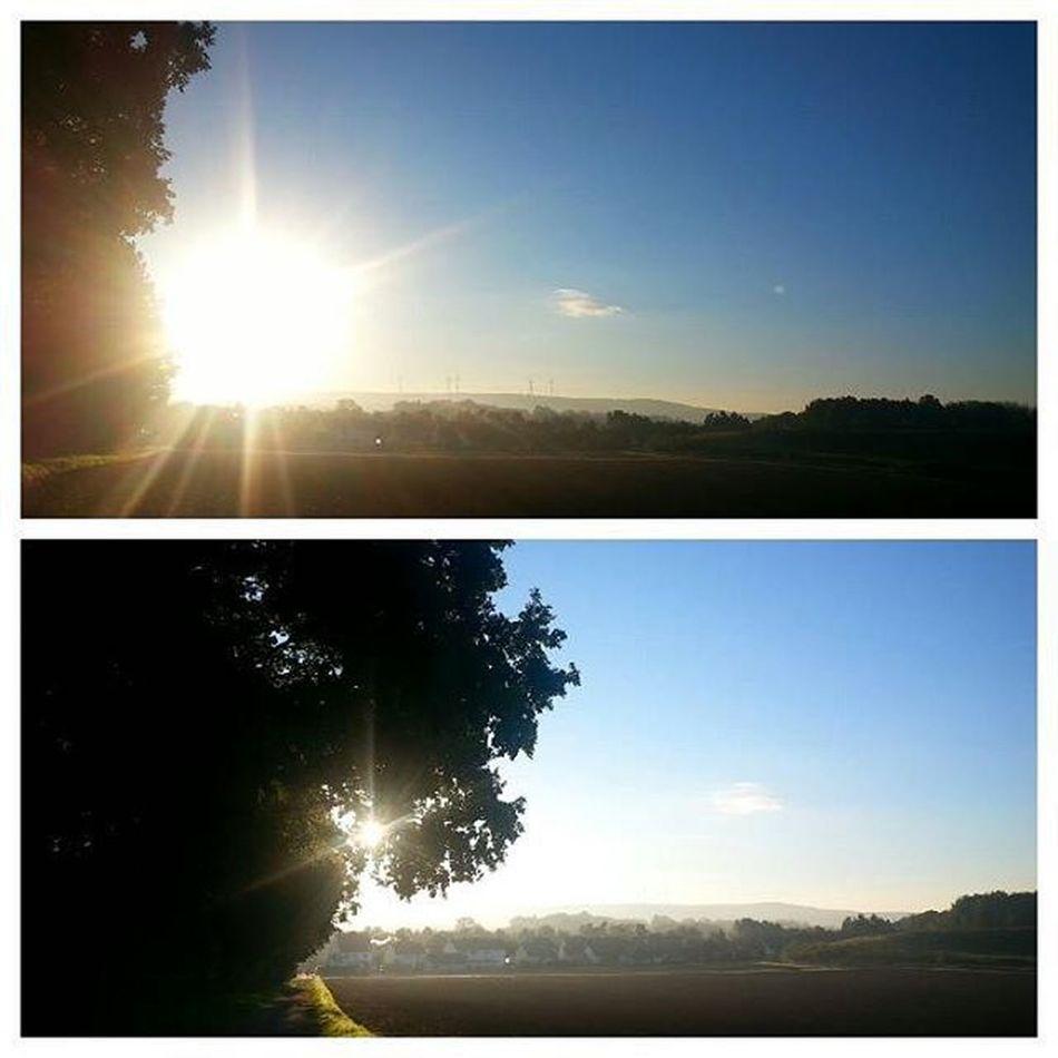 восход лучсолнца небоголубое Sonne Sonnenaufgang Blauhimmel