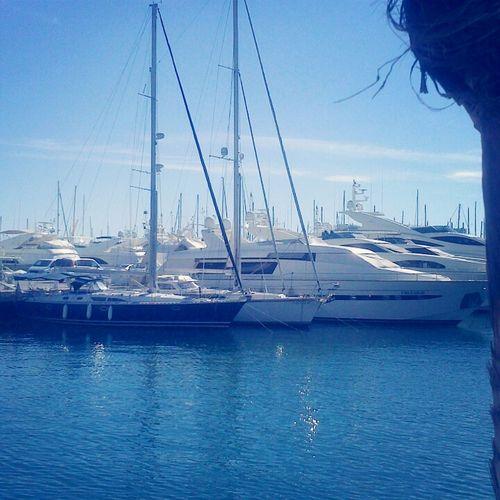 Puerto Barcos