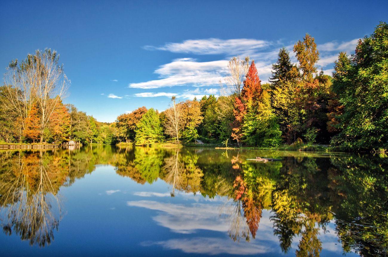 AtaturkArboretumu Arboretum Lake View Istanbul