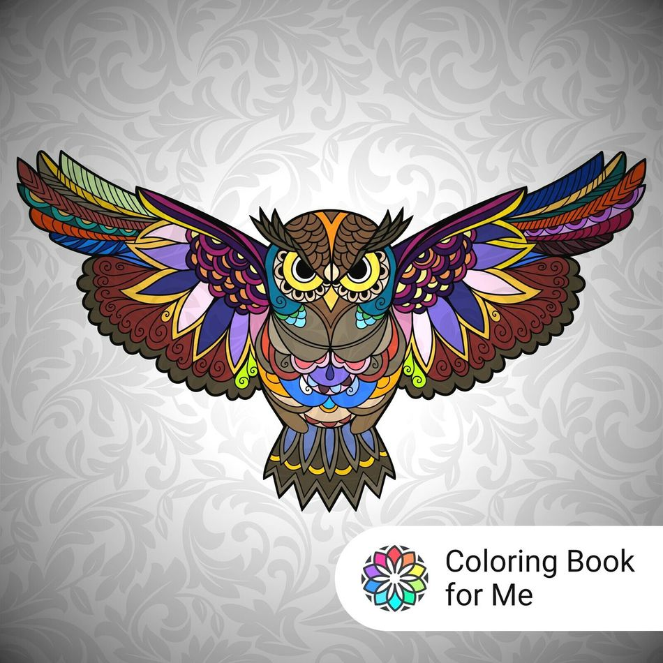 Colors Colourful No People Animal Body Part Owl Art Colored Byme 😆