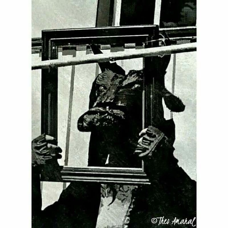 Image Blackandwhite Photo Photography Blackandwhitephotography Black Minotaur Minotauro
