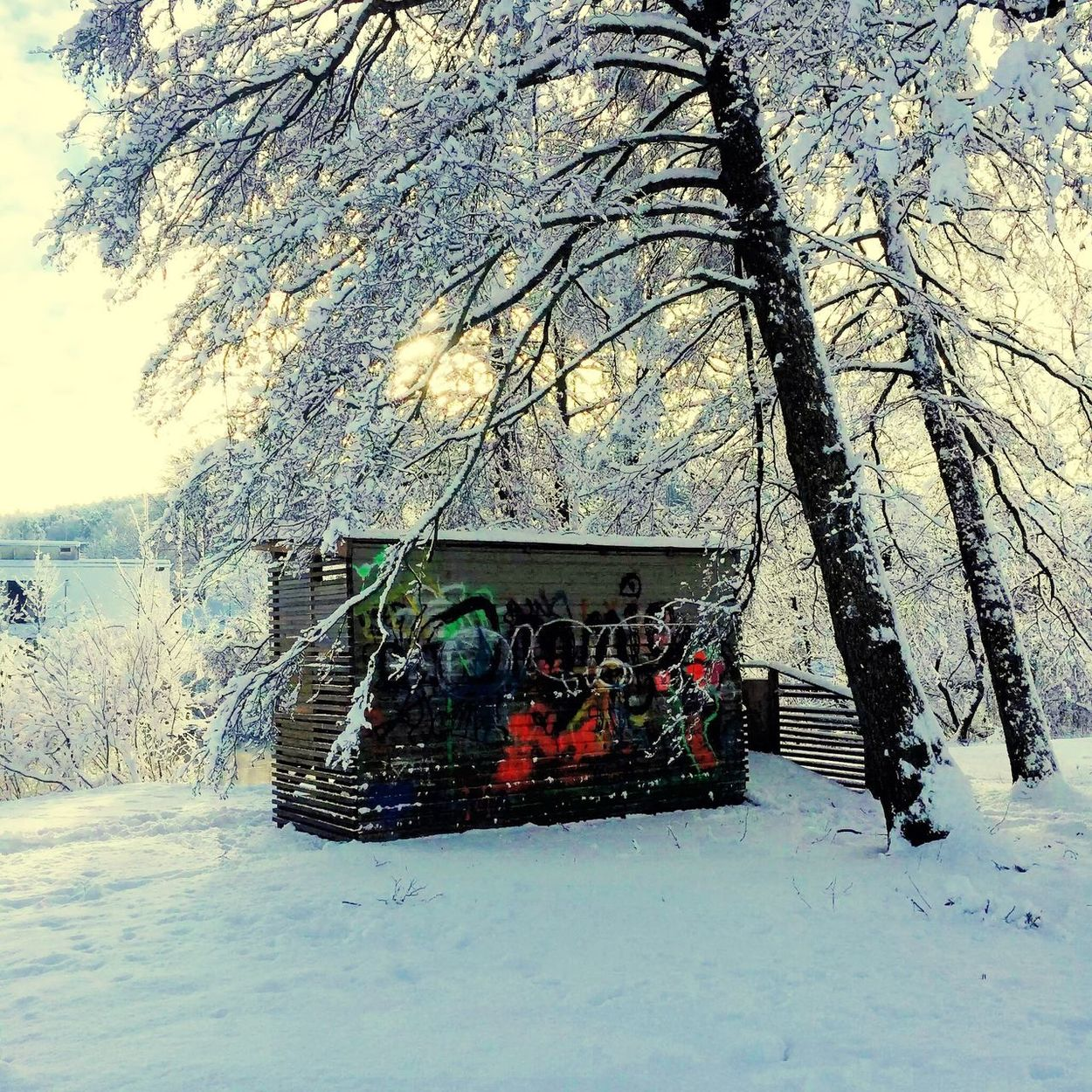 Graffiti In The Park wintertime snow White sun blue sky Crispy Snow Fresh Air Nature ❄