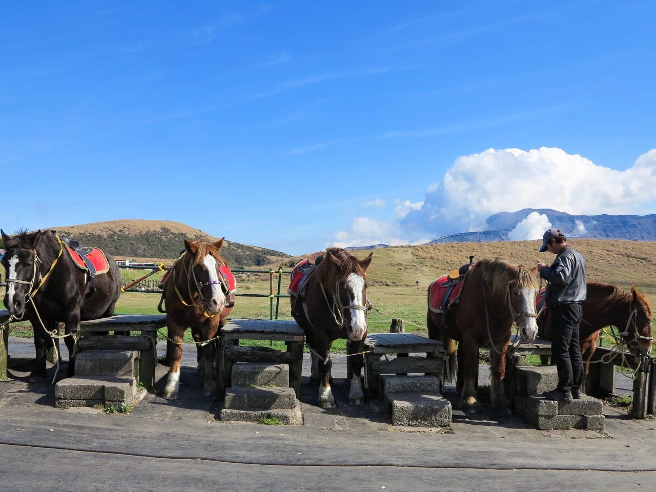 horse, domestic animals, mammal, sky, day, blue, livestock, sunlight, men, outdoors, medium group of people, real people, nature, horse racing, mountain, people