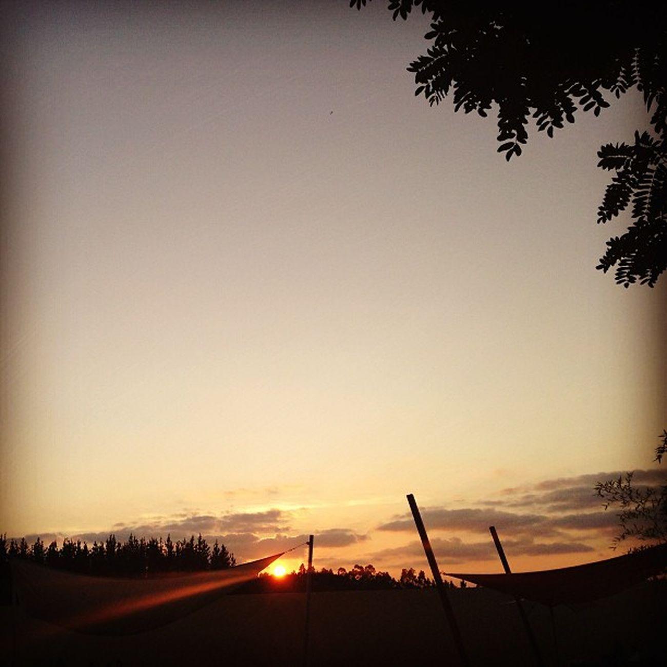 #igers #iphone5 #igmasters #ig_captures #ig_portugal #igworldclub #igersportugal #igers_figueira #cantanhede #arazede #portugal #portugaligers #portugal_lovers #portugal_em_fotos #portugaloteuolhar #portugaldenorteasul #casamento #noivos #quintaoliveira # Restaurante Ig_captures Summer Arazede Sun Portugaloteuolhar Sunset Portugal_lovers Igers_figueira Portugal Portugal_em_fotos Igworldclub IPhone5 Ig_portugal Casamento Noivos Igers Portugaligers Igersportugal Quintaoliveira Portugaldenorteasul Cantanhede Igmasters
