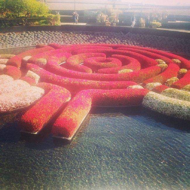Getty gardens Latimes Artlove