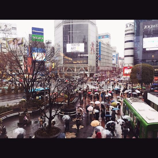 Shinjuku Japan Hatiko