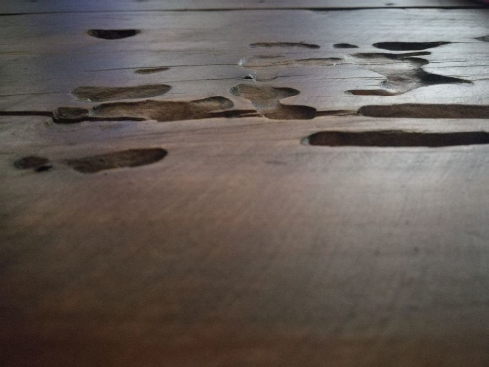 Woodtable Close-up