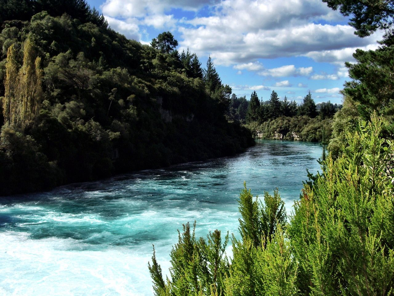 Taupo New Zealand Huka Falls, NZ Tree Nature Water Beauty In Nature Sky Scenics Tranquil Scene Cloud - Sky Outdoors Tranquility No People Growth Day