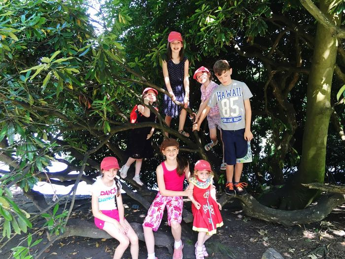 Family Heaton Park Love Tree Leisure Activity Family Togetherness Outdoors Cousins  Tree Climbing Park Gardens Manchester Holiday Back To Nature Being Kids