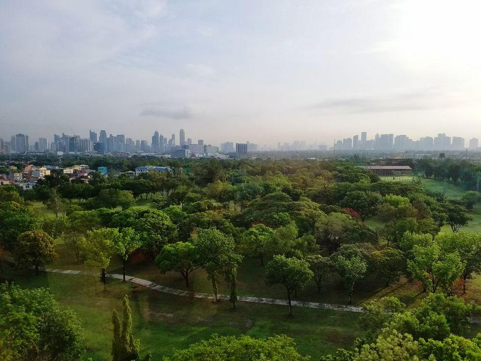 Manilla skyline