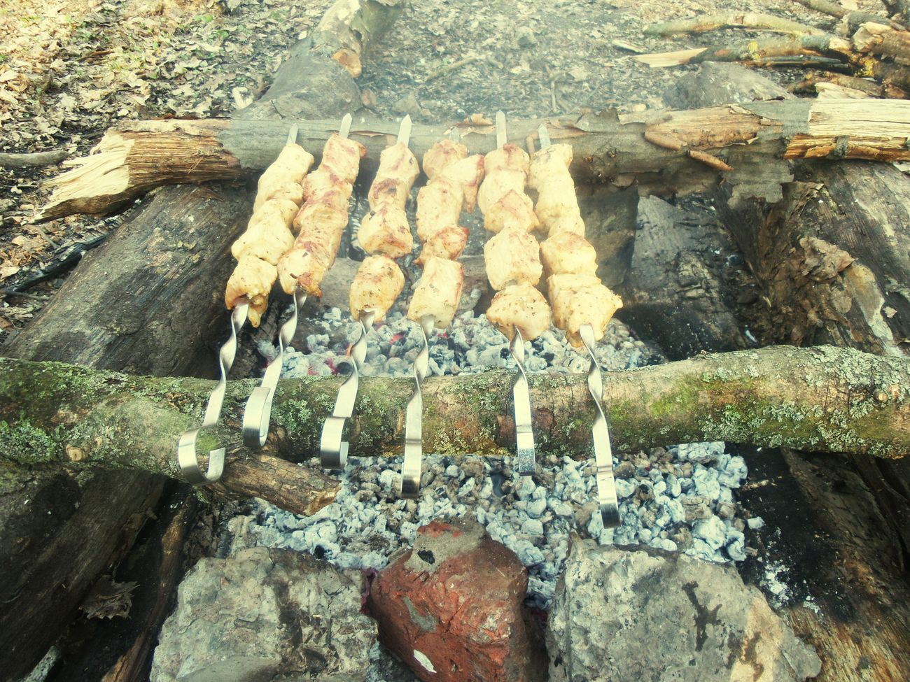Grilling Syhiv Forest Begin Friends ❤ Ukraine, Lviv