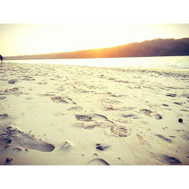 jejak di ujung pulau jawa InstaMagAndroid Ujungkulon Pulaupeucang Peucang Beach INDONESIA Whitesand IndonesiaKaya