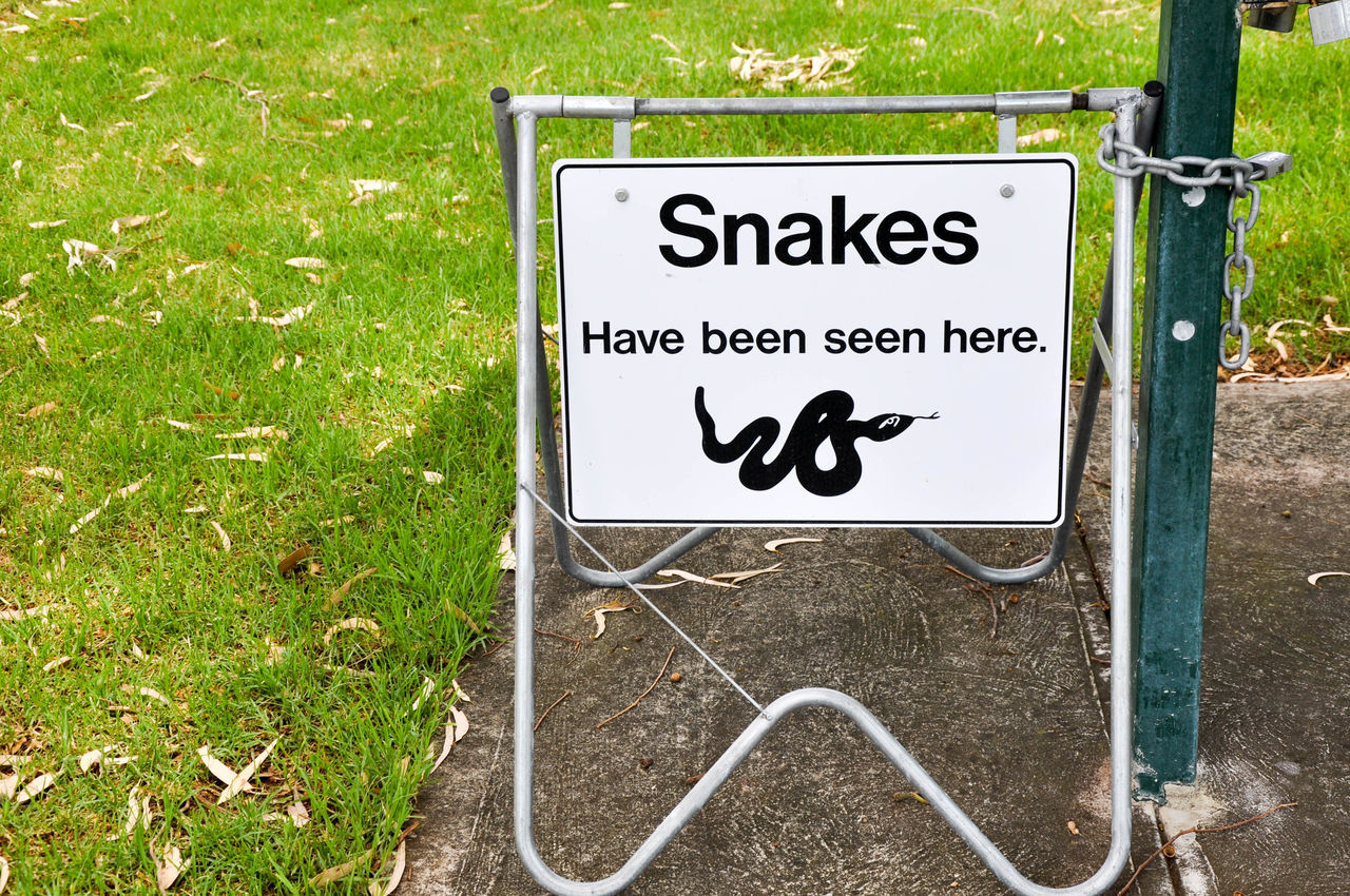 Snake warning sign in Manning Park in Western Australia. Animal Themes Australia Caution Close-up Communication Day Grass Image Manning Park Outdoors Park Park Sign Picture Precaution Prevention Safety Sign Signage Signboard Snake Snake Warning Text Warning Western Australia Wildlife