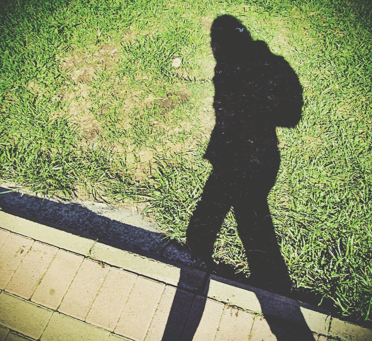 High Angle View Of Woman Shadow Falling On Grassy Field