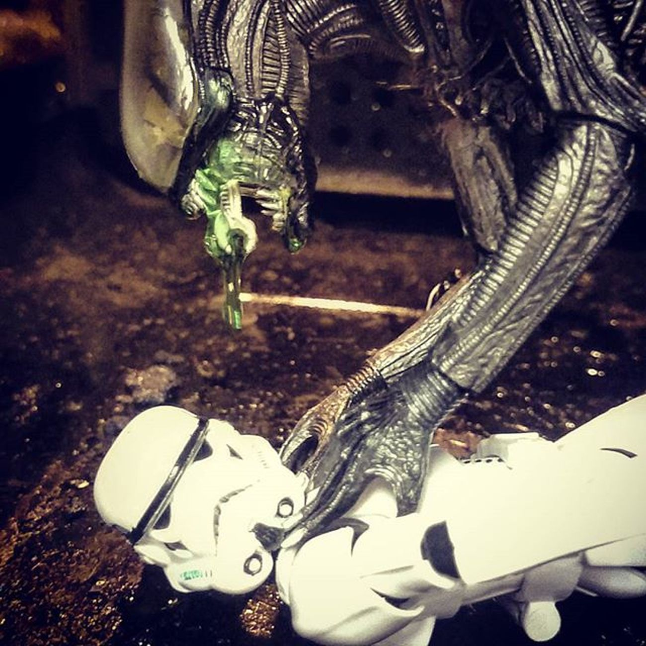 Not the best shot, just trying to get some realistic slobber! Normanthetrooper Geoffthexenomorph Toyoutsiders @toyoutsiders Toyphotography Toyslagram_Starwars Toyunion Toydiscovery @toydiscovery Justanothertoygroup Starwarselite @starwars_3lite Starwarsblackseries Stormtrooper Xenomorph Tgif_toys @tgif_toys