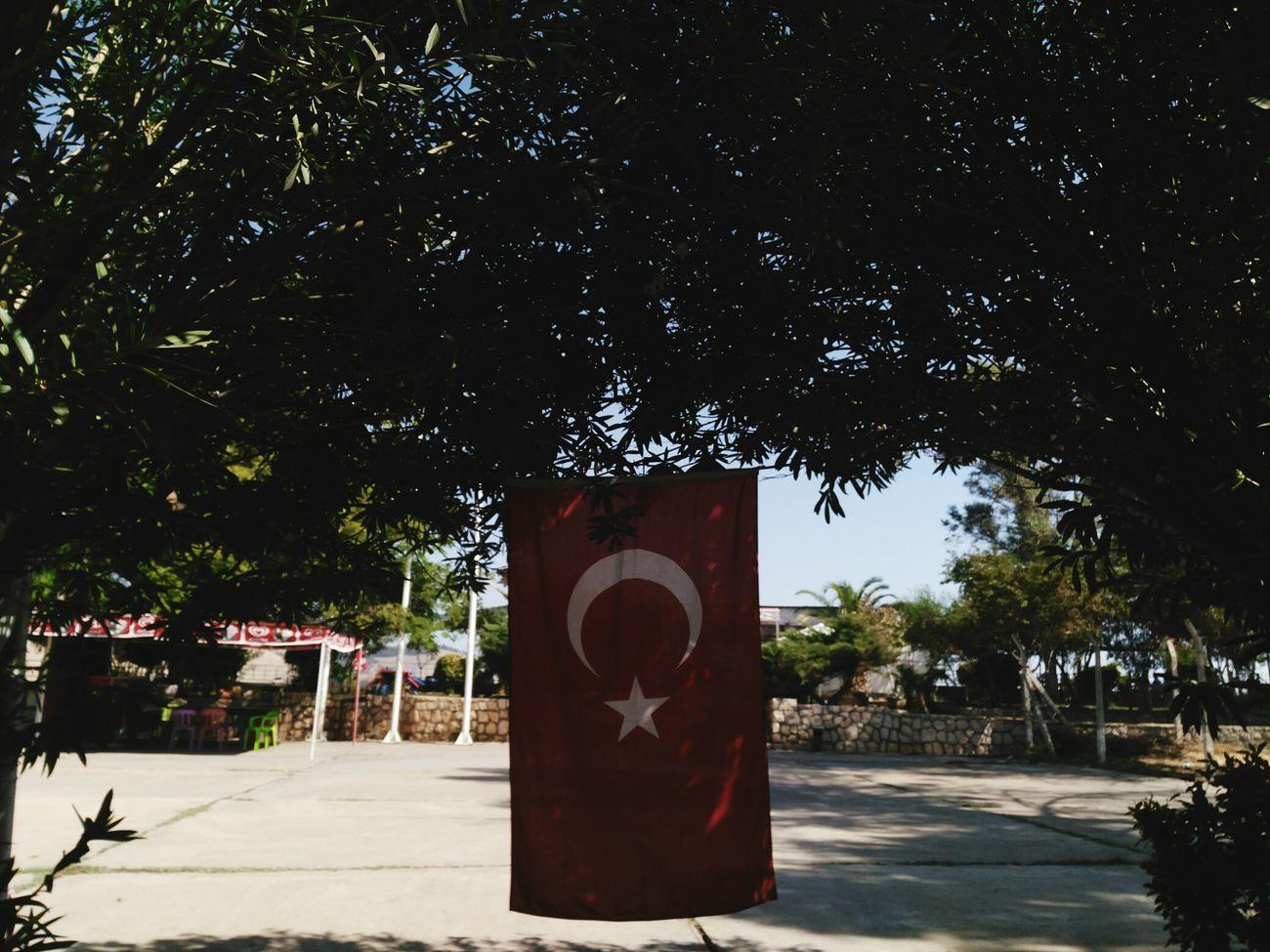 Türk Bayrağı 🇹🇷