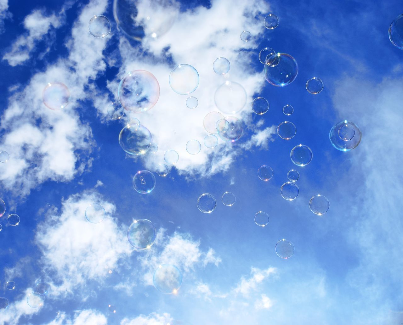 Bubbles in the sky Backgrounds Blue Bubble Bubble Wand Cloud - Sky Colorful Day Dream Dreaming Freedom Fun Funny Happiness Happy Nature No People Outdoors Sky Summer Wind
