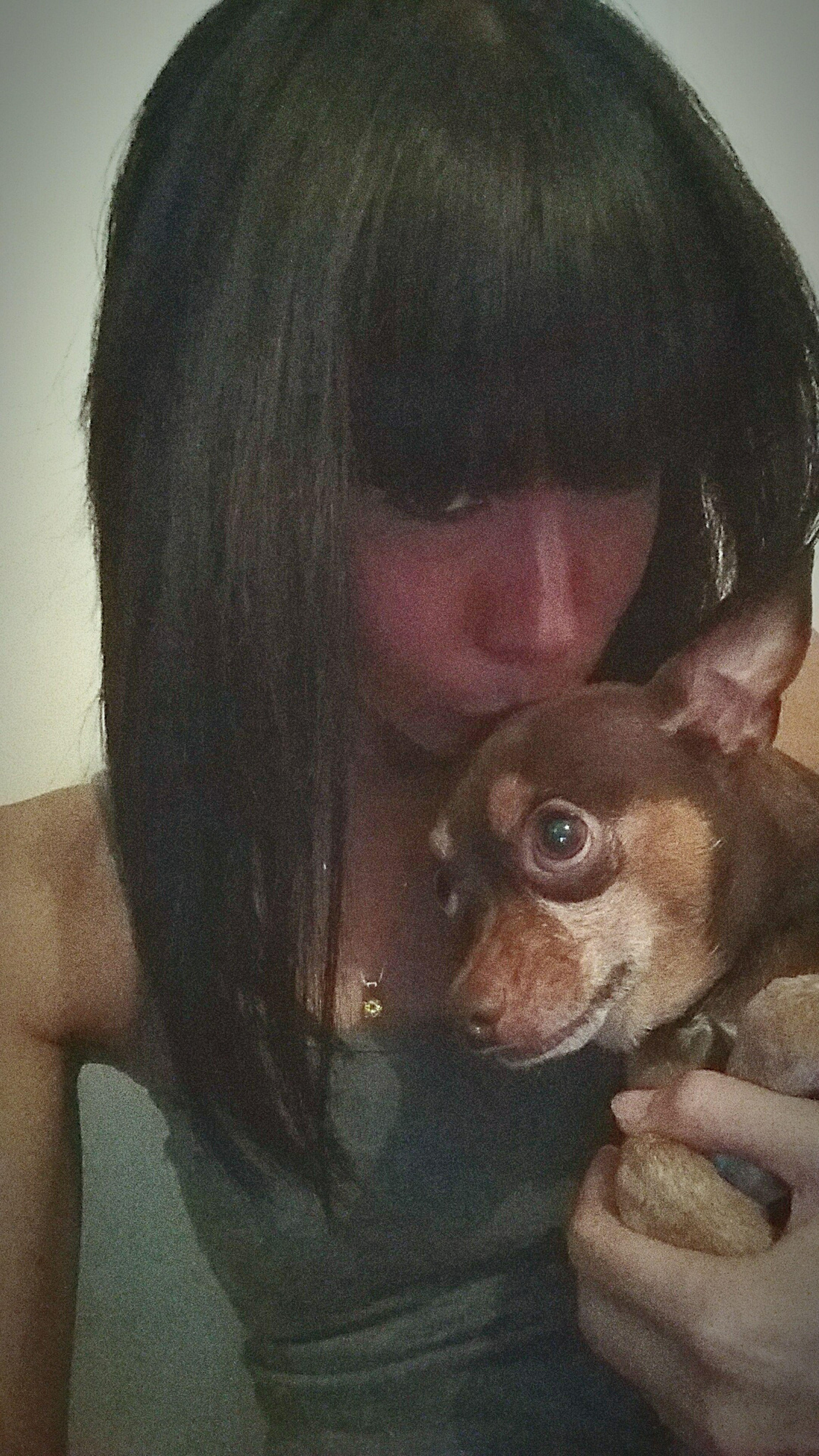 My baby dog Sundaysunny Lifeisbeautiful Loveofmylife