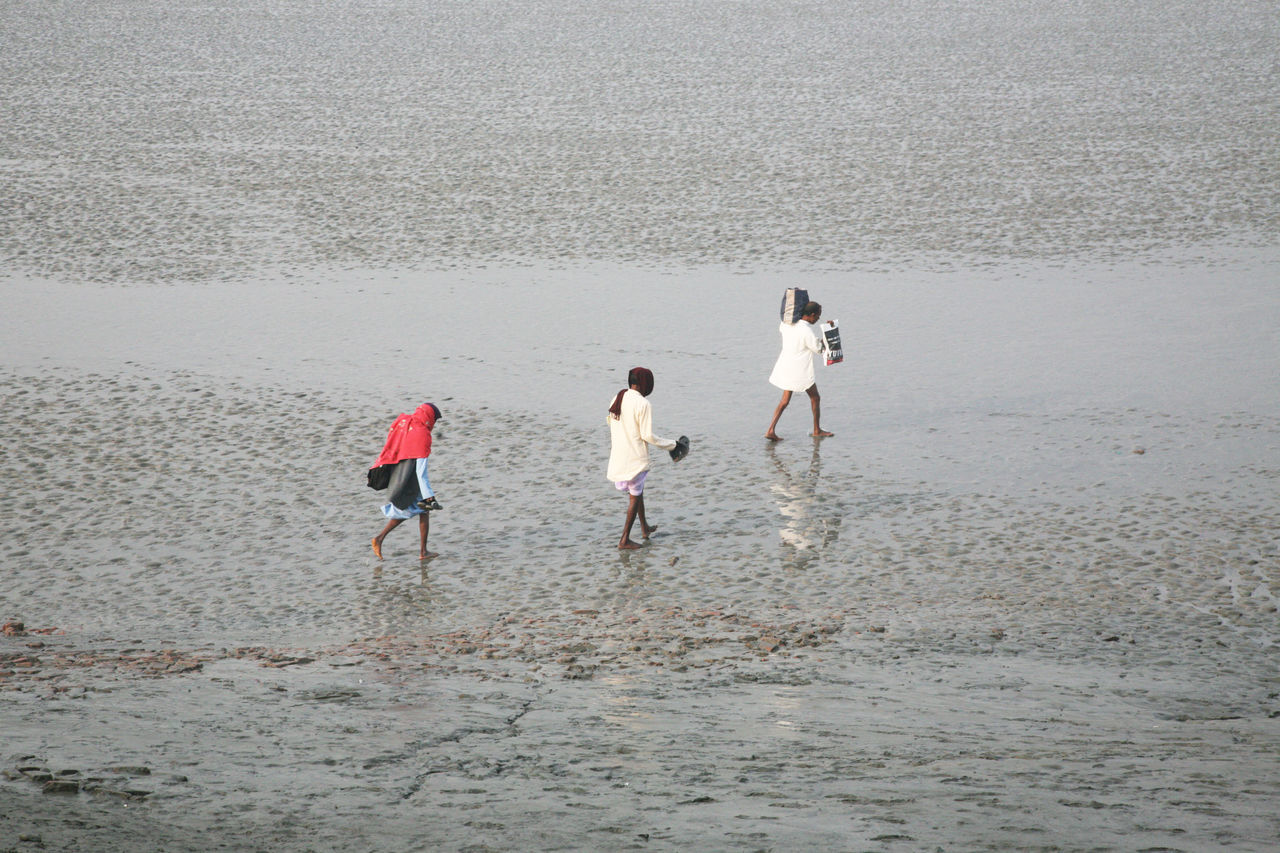 During low tide the water in the river Malta falls so low that people walk to the other shore in Canning Town, India on January 17, 2009. Canning Canning Town Coast Ebb India Low Low Tide Malta River Mud Nature People Shore Tidal Tide Town Walk Walking Water West Bengal