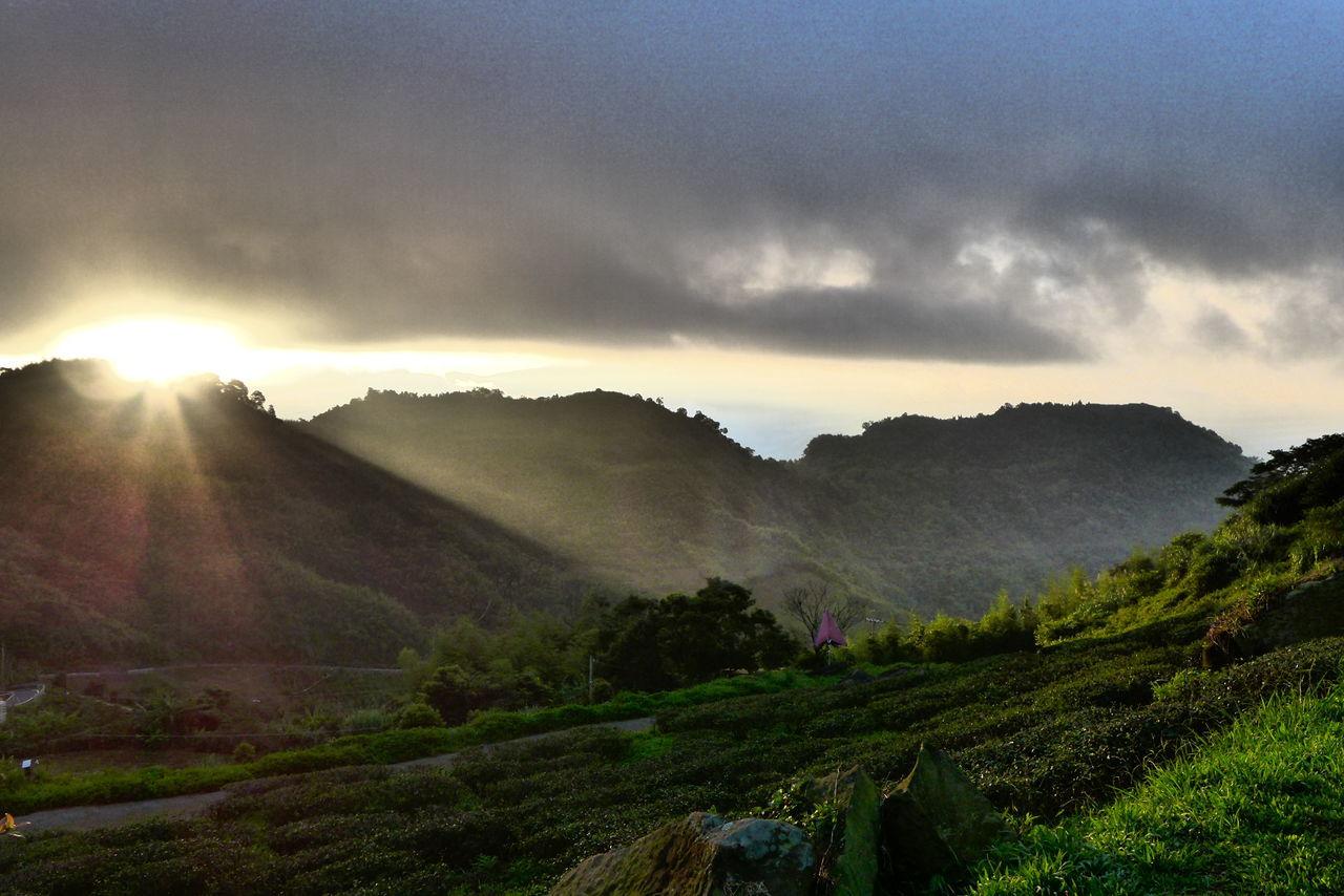 阿里山日出 Sunbeam Tranquil Scene Scenics Sunlight Tranquility Sun Landscape Grass Mountain Non-urban Scene Beauty In Nature Road Cloud - Sky Nature Lens Flare Sky Mountain Range Majestic Green Color Remote