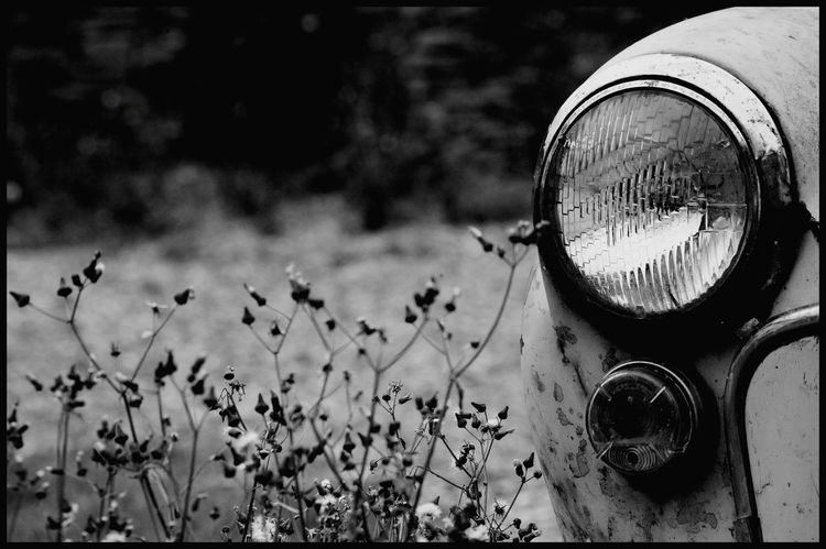 Outdoors Close-up Morris Minor Black & White Front Lights