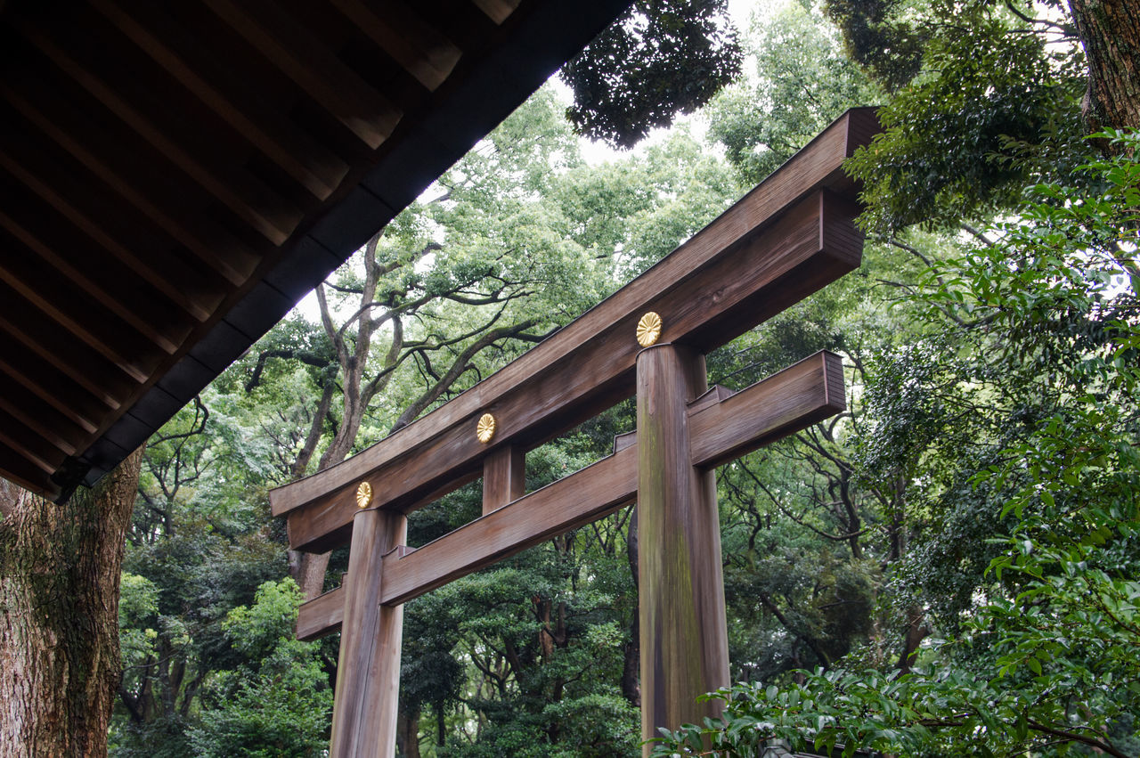 Architecture ASIA Built Structure Calm Day Famous Place Forest Garden Horizontal Japan Low Angle View Nature No People Outdoors Park Peaceful Plant Shrine Tokyo TORII Tranquility Travel Destinations Travelling Tree Wood - Material The Architect - 2017 EyeEm Awards