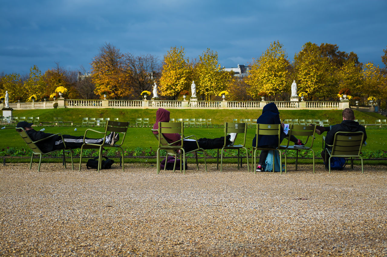 relaxing.. Adult Adults Only Day Full Length Garden Gardens Jardin Du Luxembourg Outdoors Paris People Realaxing Rear View Sky Studying Tree EyeEm Gallery EyeEm Best Shots - Nature EyeEm Best Shots Eyeemphoto