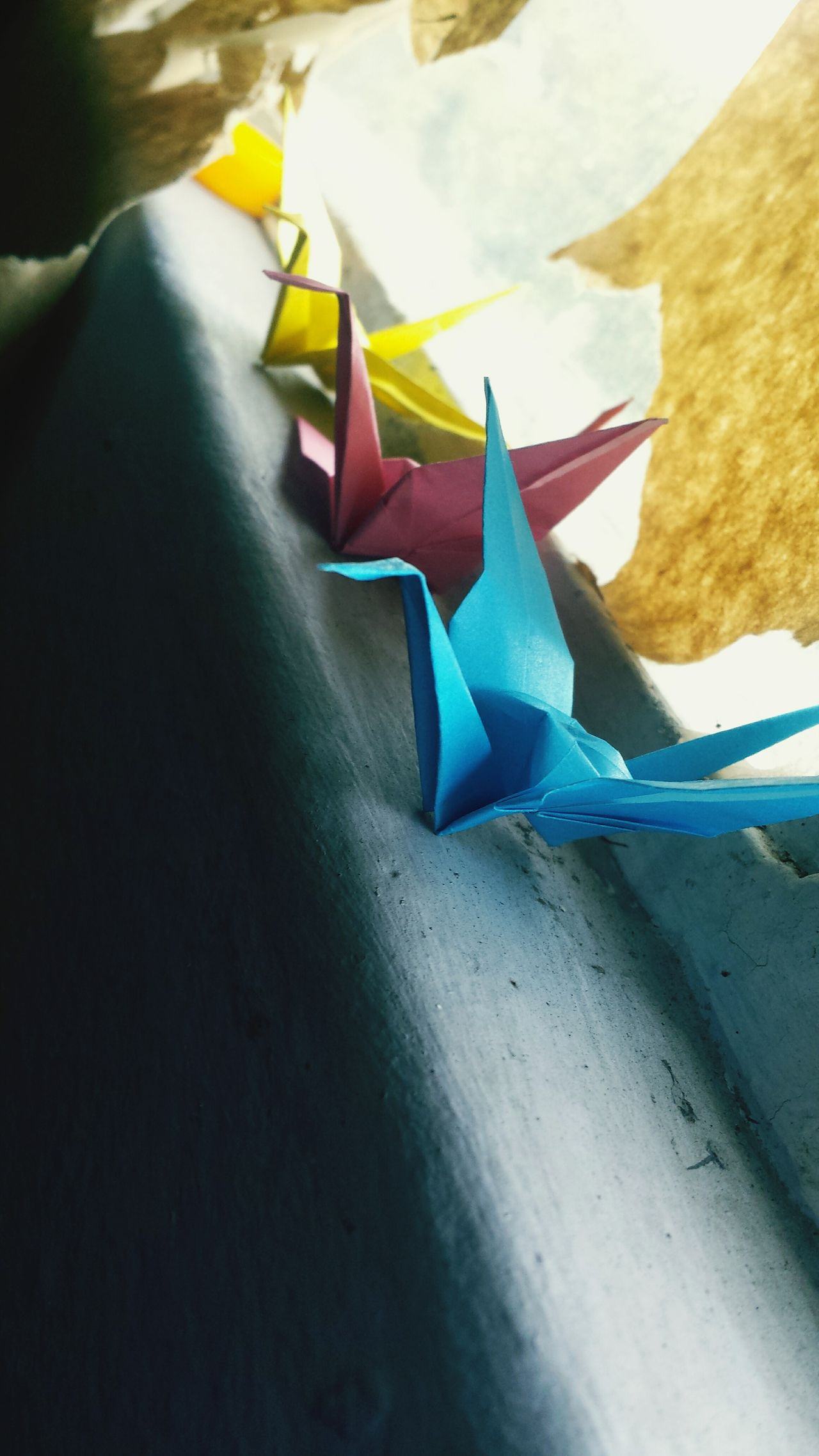 Paper View Origami Birds Origami Colors Peace Art Beautiful High Definition