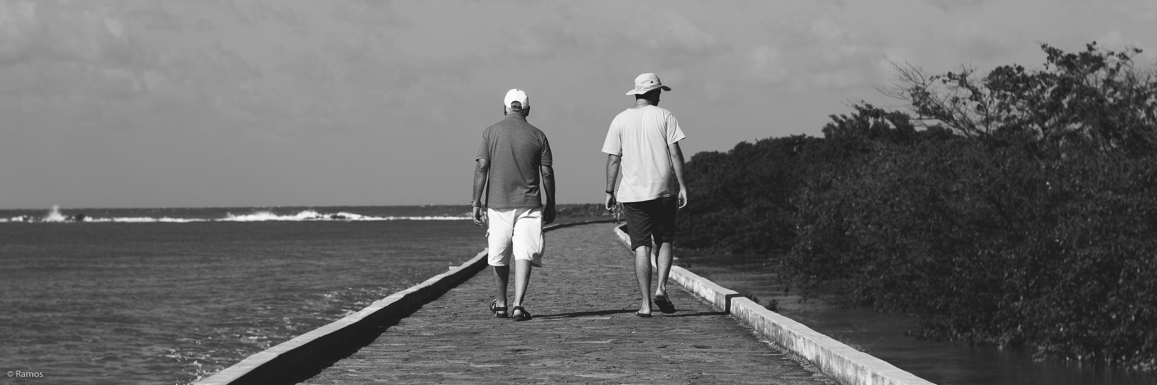 rear view, men, horizon over water, sea, water, full length, togetherness, day, casual clothing, remote, solitude, the way forward, long, tranquility