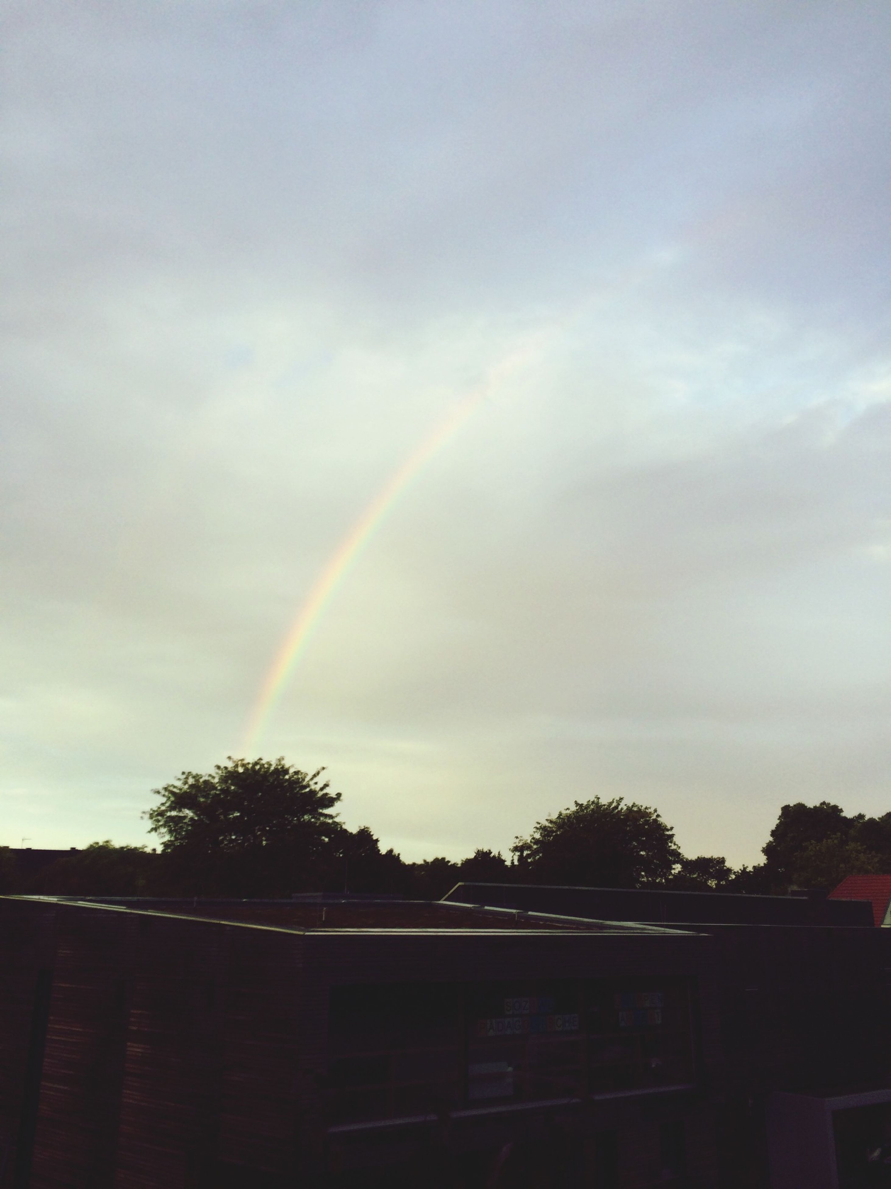 rainbow, sky, tree, cloud - sky, beauty in nature, nature, multi colored, cloudy, scenics, low angle view, building exterior, silhouette, cloud, weather, outdoors, built structure, tranquility, sunset, dusk, growth
