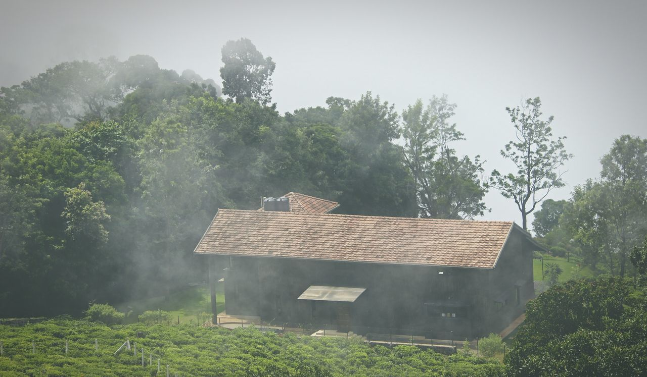Dream House ! Wooden House My Dream House The Tourist Traveling Beautiful Place From My Point Of View Foggy Morning Trees Beauty India EyeEm Best Shots Eye4photography  EyeEm Best Edits The EyeEm Facebook Cover Challenge The Places I've Been Today The Traveler - 2015 EyeEm Awards TheMinimals (less Edit Juxt Photography) Canon600D India Travel DiariesMy Photography Incredible India Early Morning Nature_perfection EyeEm Nature Lover Landscapes With WhiteWall