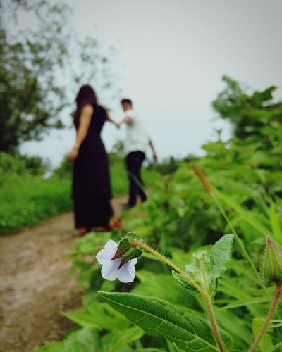 Focus Object Two People Real People Togetherness Lifestyles Outdoors Nature India Love Couple Bonding Grass Focus On Foreground Flowers EyeEm Best Shots IPhoneography Heaven