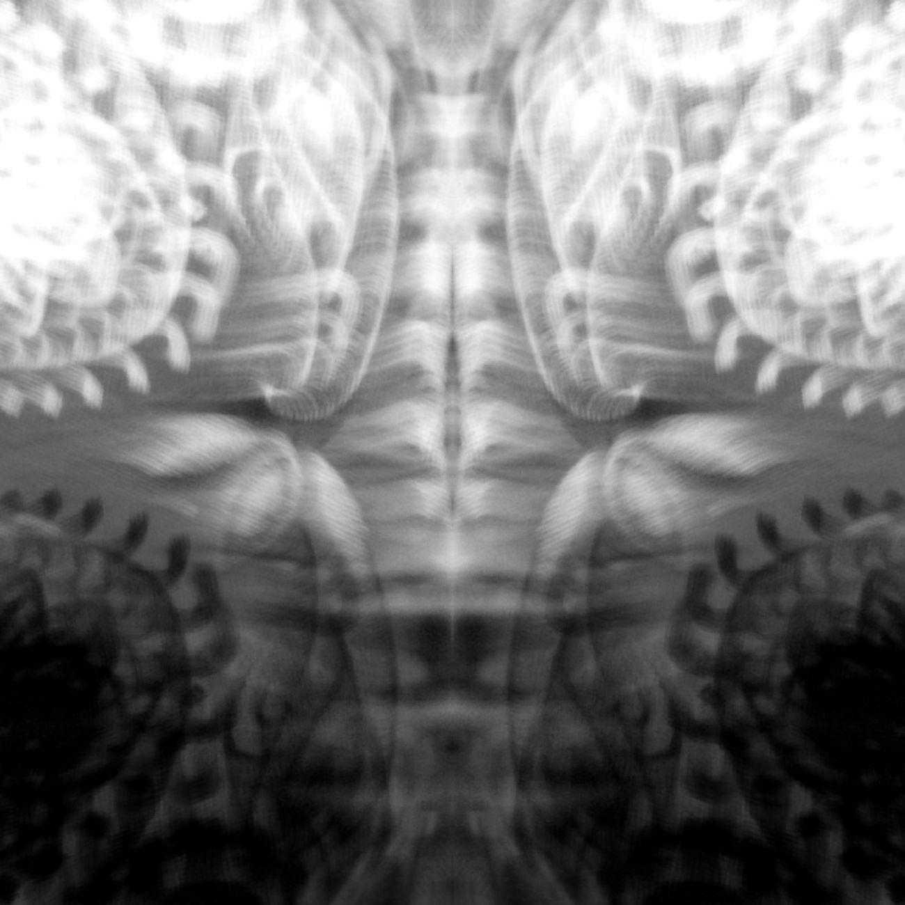 Trust_the_process Abstract Blackandwhite Monochrome