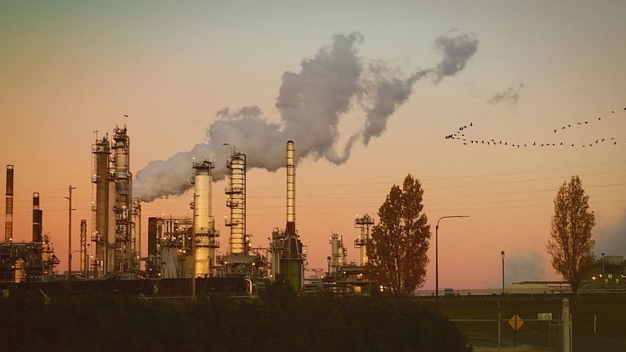 Sunset Air Pollution Outdoors Oil Industry Oil Refinery Oilfield Oil And Gas Oil Refinery Tesoro Anacortes Anacortes, Wa Geese Flock Sunrise Sillouette Smog First Eyeem Photo