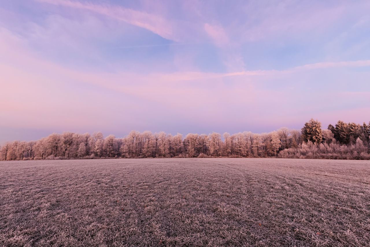 Beautiful stock photos of sunrise,  Agriculture,  Beauty In Nature,  Cold Temperature,  Day