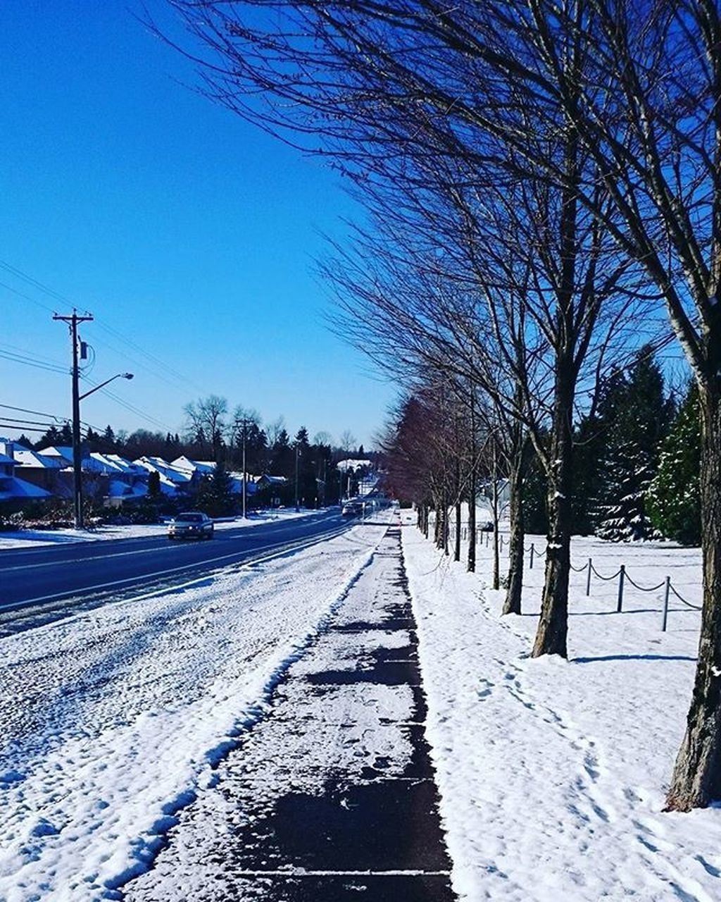 snow, cold temperature, winter, tree, transportation, rail transportation, bare tree, day, no people, railroad track, clear sky, nature, outdoors, the way forward, sky, blue