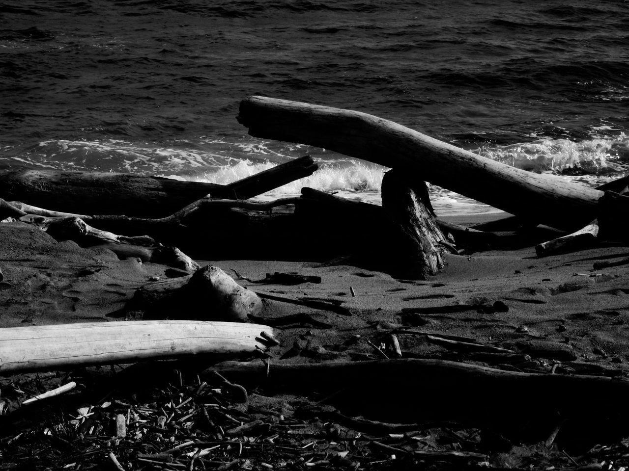 Sea Water Beach Nature Driftwood Sand Outdoors Kauai Hawaii Blackandwhite Photography