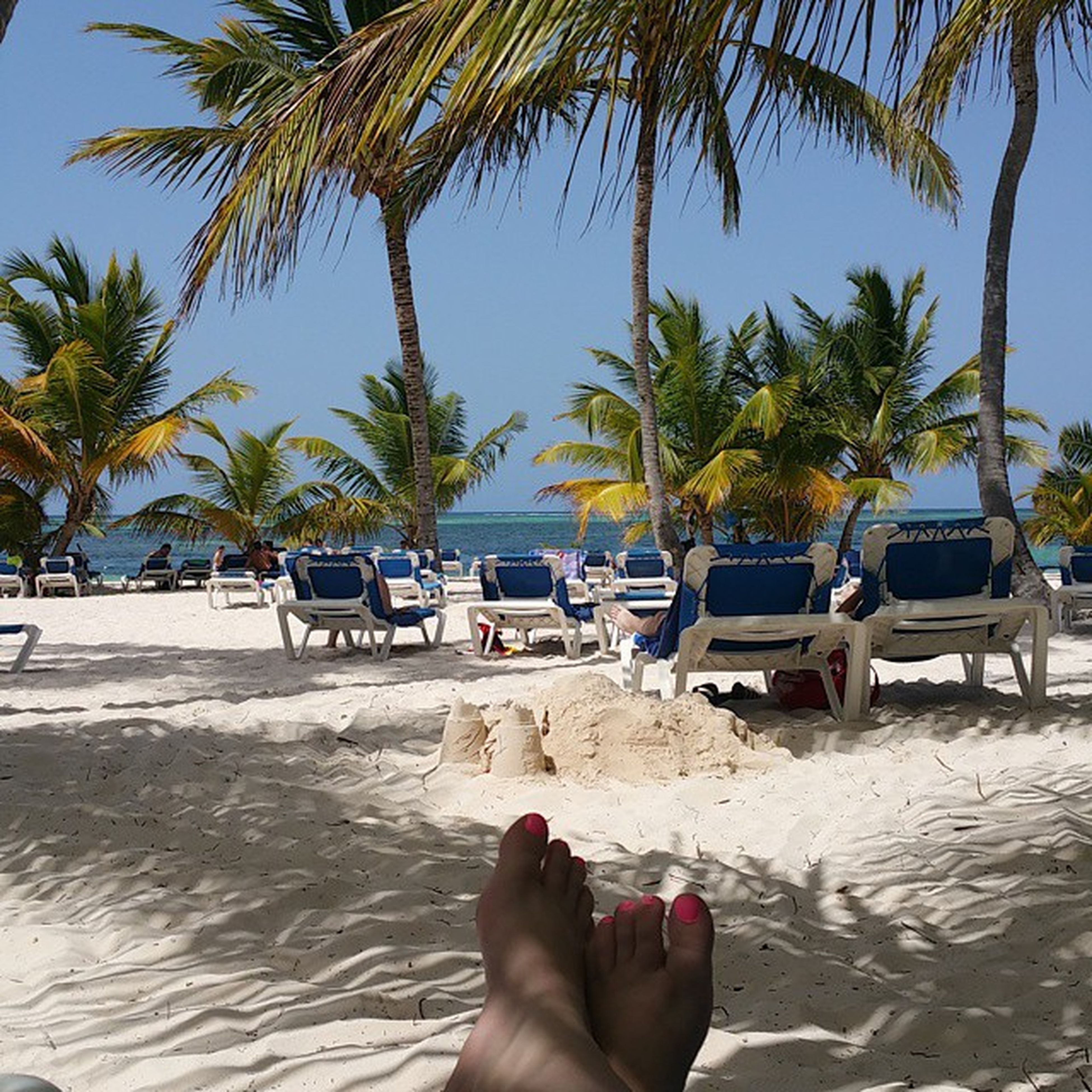 beach, water, sand, palm tree, sea, tree, shore, personal perspective, relaxation, lifestyles, leisure activity, vacations, low section, barefoot, person, lounge chair