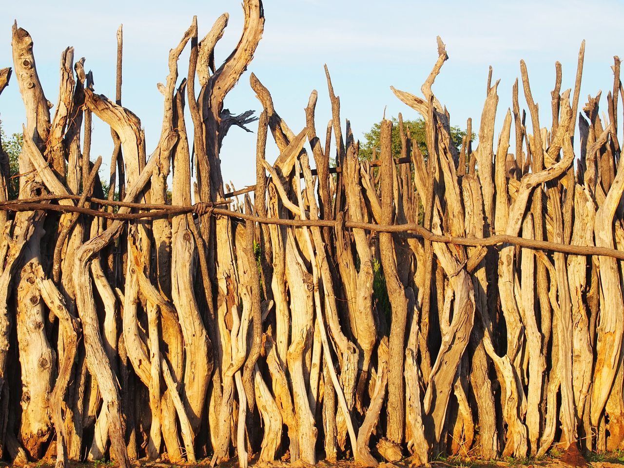 ... Enjoying Nature Home High Wooden Fence Nature Still Life Sun Stay Out Meumbo Ovamboland Namibia Rural Namibia I Love Nam