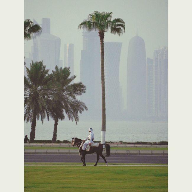 Taking Photos Qatarlife Qatar Corniche Doha Horses Exercising Cavalry Doha Qatar Sea
