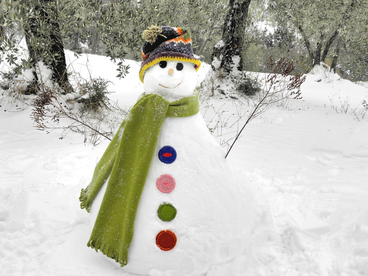 Winter Snow Cold Temperature Snowman White Color Nature No People Childhood Outdoors Tree Day Beauty In Nature Smiling Olive Tree Multi Colored Wool Hat Hat Scarf Green Scarf Open Arms Bottons EyeEmNewHere
