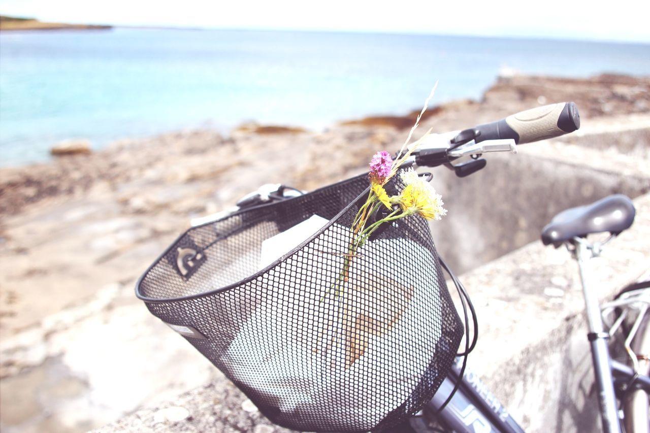 Beautiful stock photos of bike, Basket, Bicycle, Chapel Hill, Close-Up