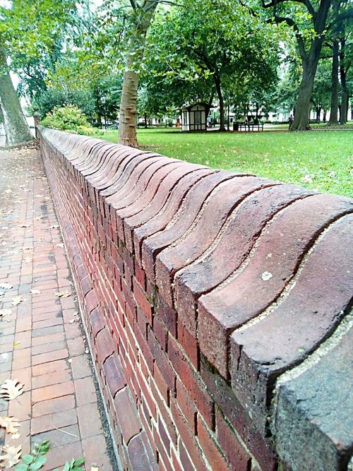 Tree Paving Stone Pedestrian Walkway Footpath Tranquility Outdoors Tranquil Scene Brick Wall City Park